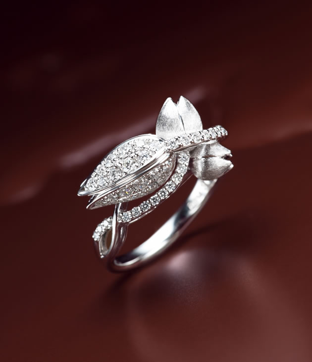 pic-rit_diamond_ring-07