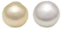 シロチョウ真珠